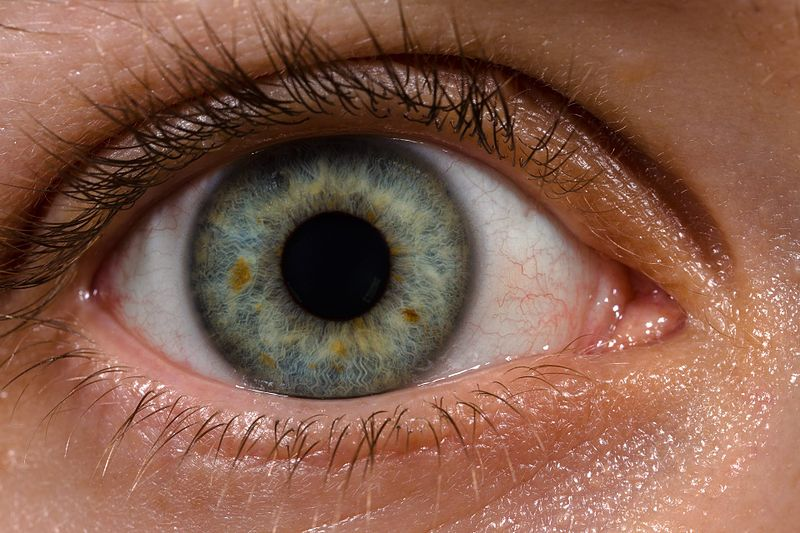 What's Going On In The World Of Ophthalmology? - Take it Down